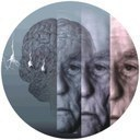 Portuguese society and ageing diseases: the Alzheimer Project